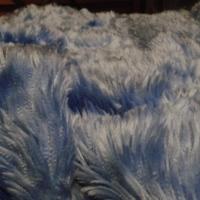 De blauwe zeesprei