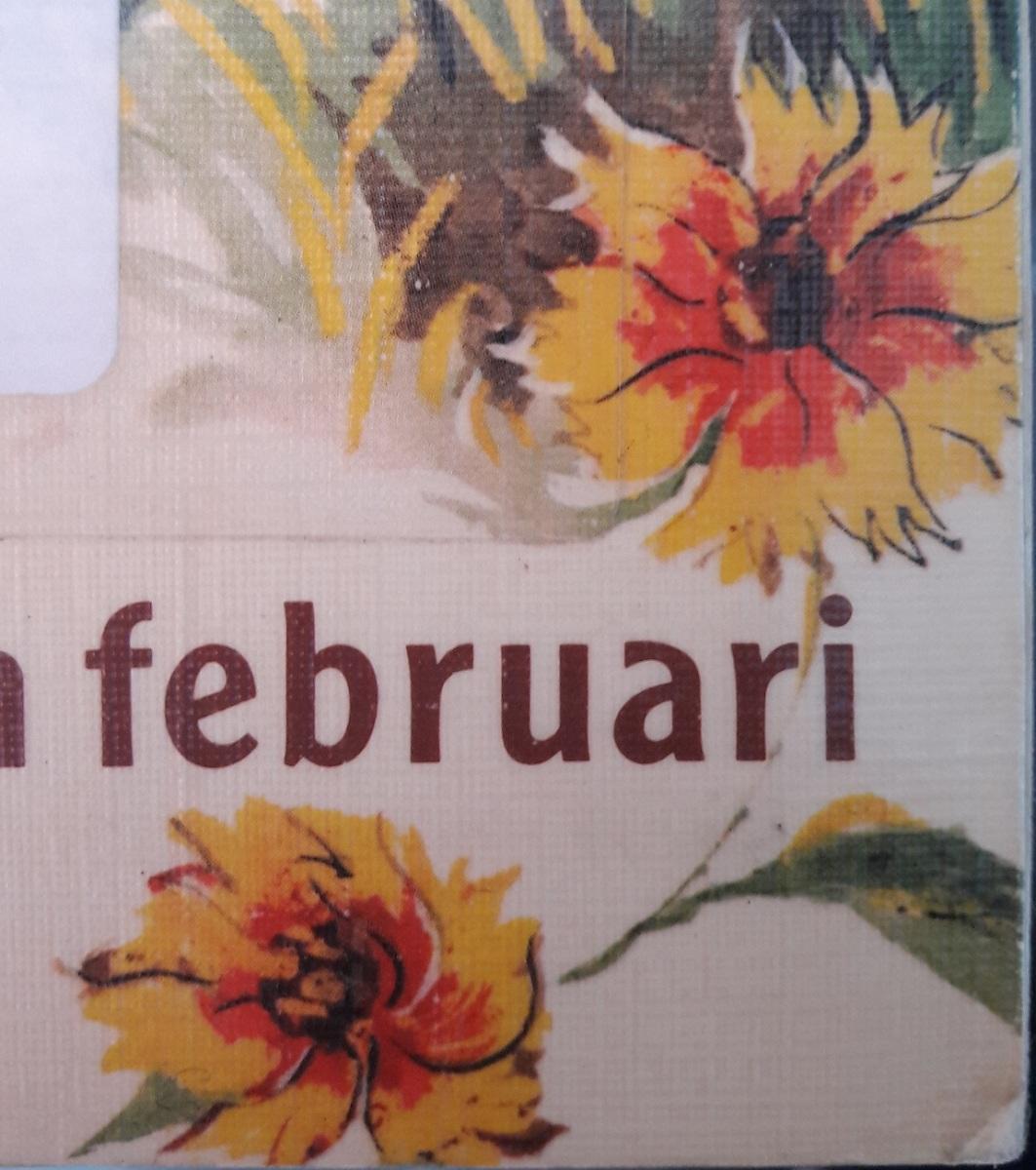 Eik-boek 1 : Torens van februari, Tonke Dragt