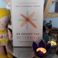 Eik-boek 2: De Kracht van Betekenis van Emily Esfahani Smith