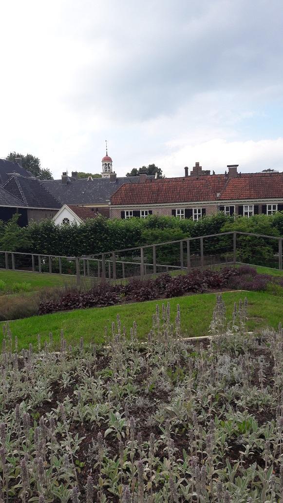 AssenMuseumtuin