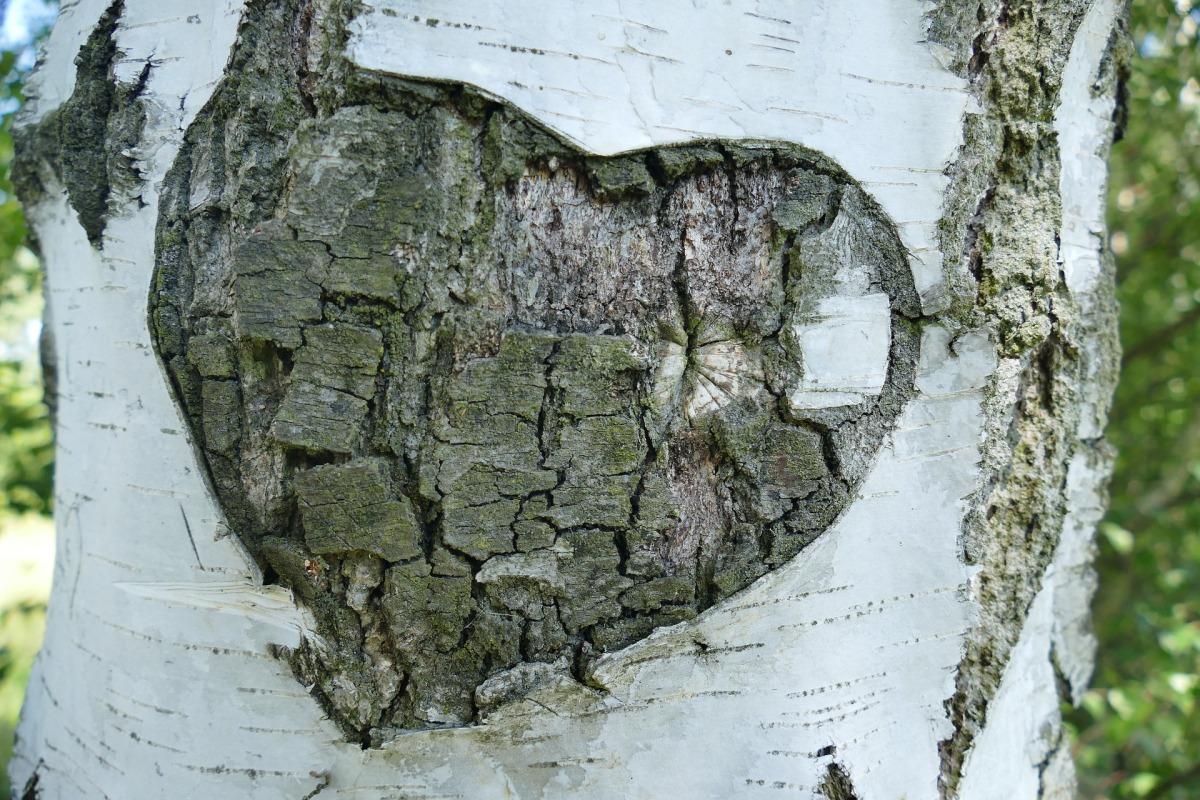 Leven met een vol hart...